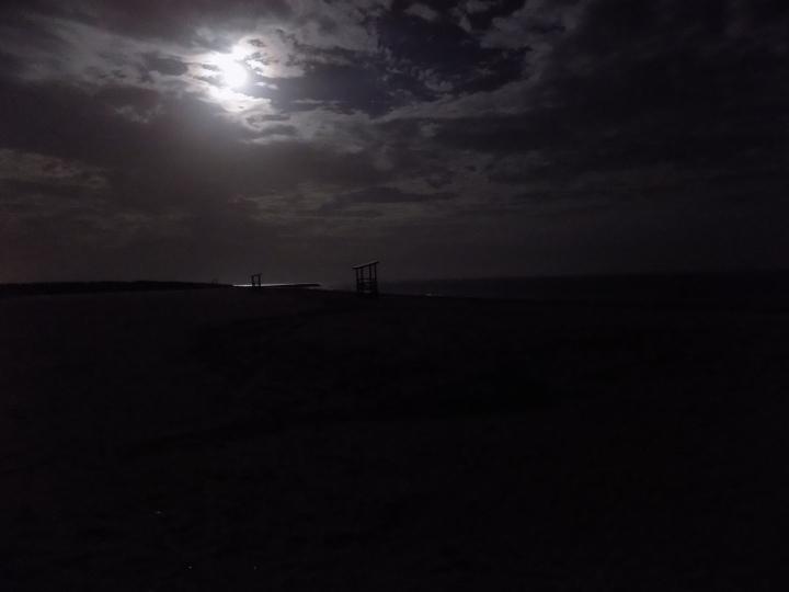 wolf-moon-3