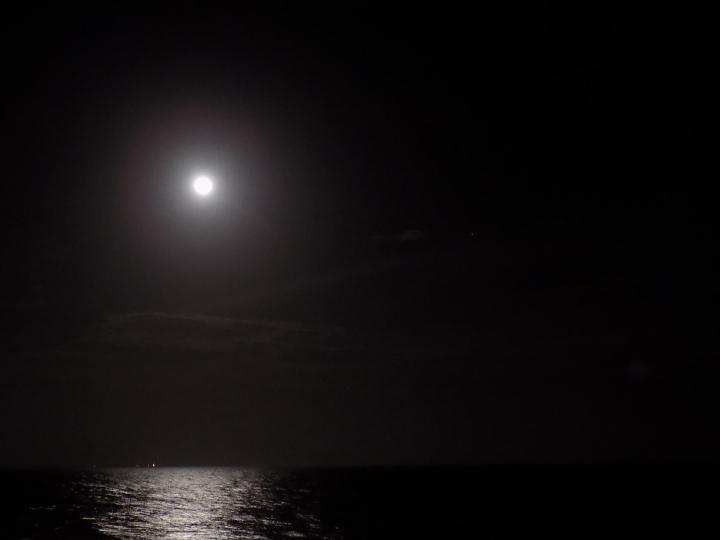 wolf-moon-4