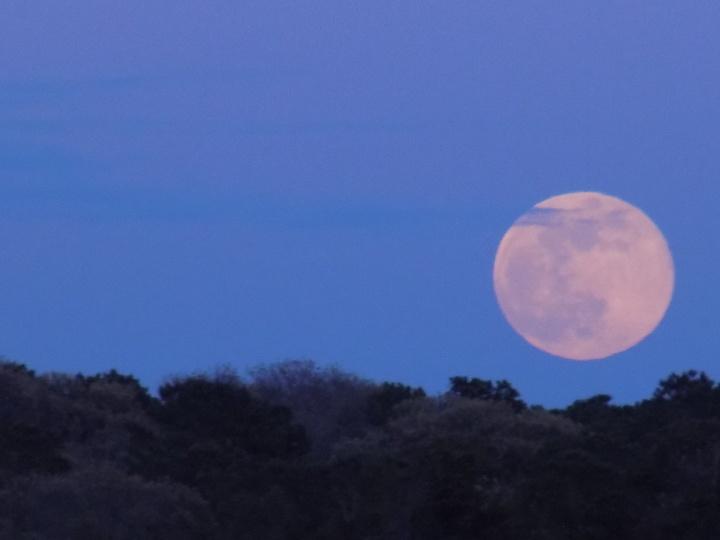 510 Rising Moon