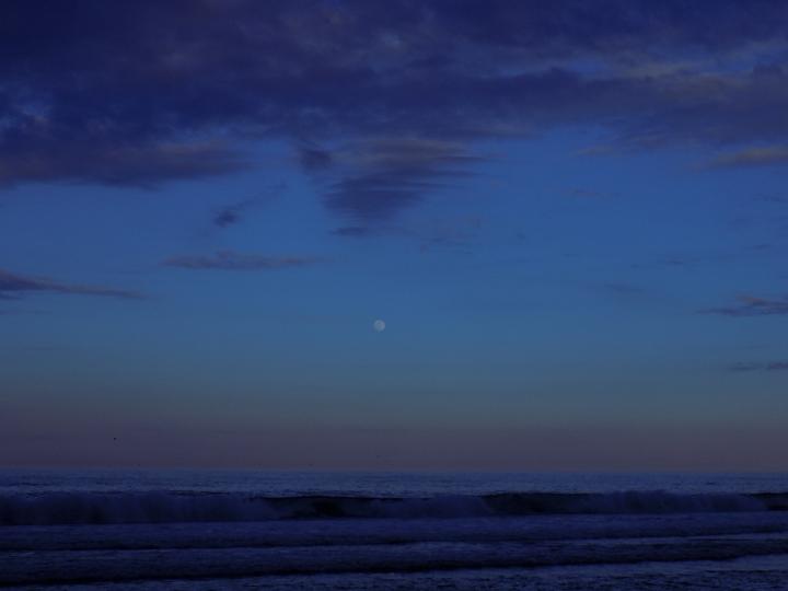 5917 Orleans Moon
