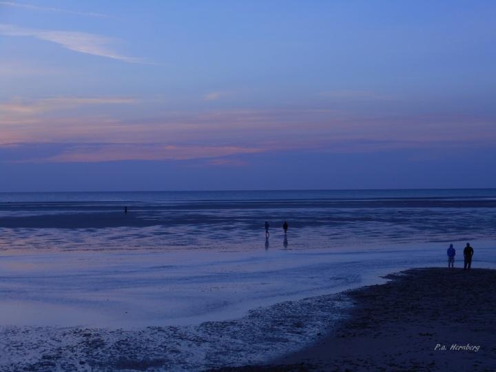 61517 Low Tide
