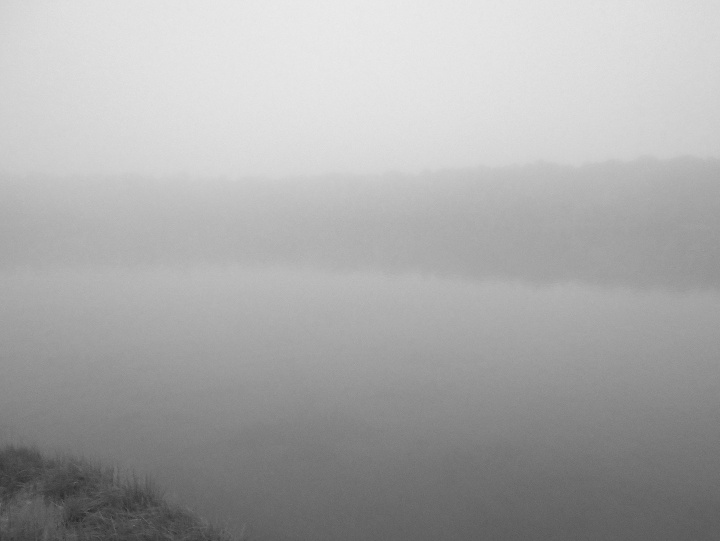 61717 Fog on Swan Pond