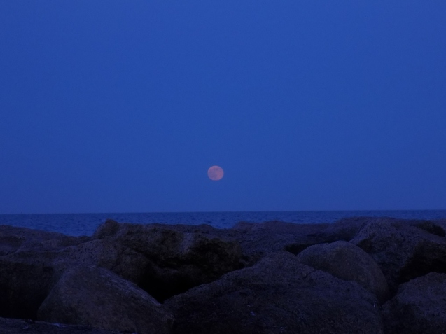 Strawberry Moon on the Rocks