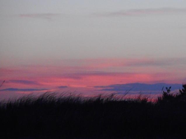 Sun Setting Over Beach Grass