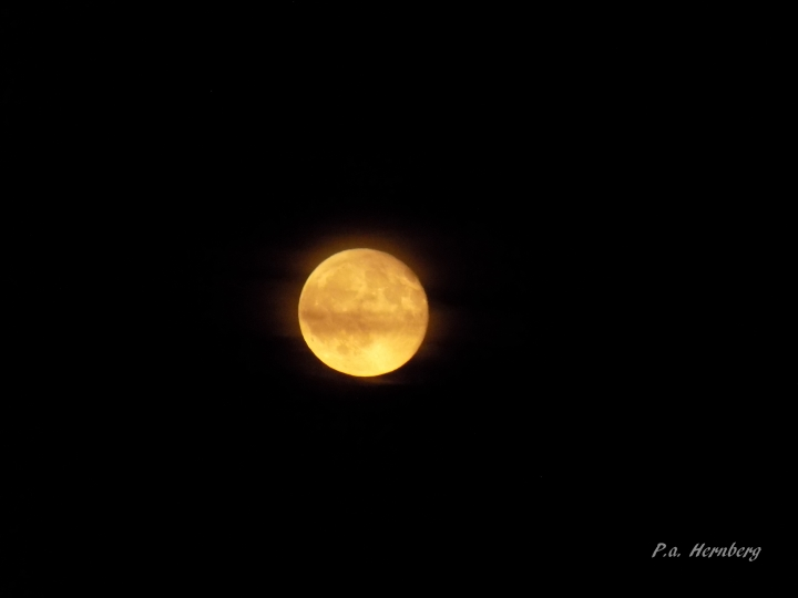 080817 moon